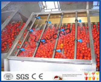 Línea de transformación del tomate