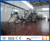 5 - 50 T/H Mango Processing Plant With Mango Pulp Machine ISO9001 / CE / SGS