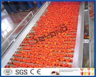 Tomate que planta la línea de transformación del tomate de la máquina por completo/2 - 50 t/h semi automática